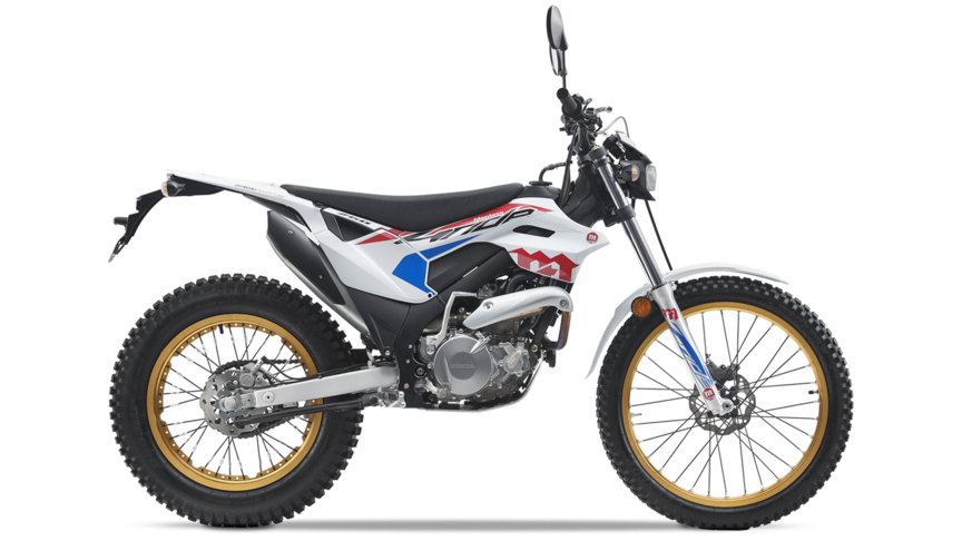 Montesa 4Ride 2020